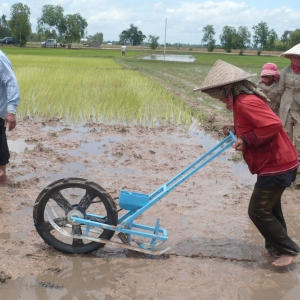 """The """"rice runner,"""" developed as part of the Design for Extreme Affordability program at Stanford's Hasso Plattner Institute, inserts fertilizer pellets in a rice paddy."""